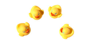 Het gele eend zwemmen Royalty-vrije Stock Afbeeldingen
