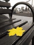 Het gele esdoornblad ligt op een houten bank royalty-vrije stock afbeelding