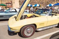 Het gele korvet van Chevrolet van 1967 Royalty-vrije Stock Afbeeldingen