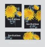 Het gele malplaatje van de de bloemkaart van de de herfstchrysant Gouden-madeliefje royalty-vrije illustratie