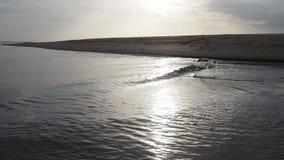 Het gelijk maken bij het strand door het overzees stock videobeelden