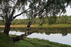 Het gelijk maken op kust van Volga. Royalty-vrije Stock Fotografie