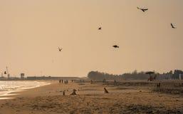 Het gelijk maken van breuk van Kollam-strandgebied stock fotografie