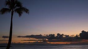 Het gelijk maken van tropische hemel met gesilhouetteerde kokosnotenpalm aan de linker en brede open meningen naar oceaan, en dra stock foto's