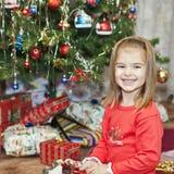 Het geluk van Kerstmis royalty-vrije stock foto