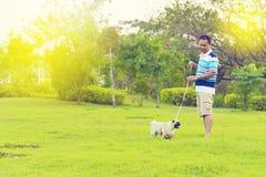 Het gelukkige Aziatische mens spelen met Pug stock foto's