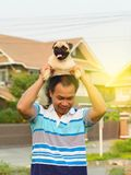 Het gelukkige Aziatische mens spelen met Pug royalty-vrije stock afbeelding