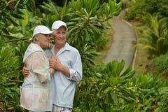 Het gelukkige bejaarde paar bevindende omhelzen in een tropisch bos Stock Afbeeldingen