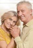 Het gelukkige bejaarde paar stellen tegen Stock Foto's