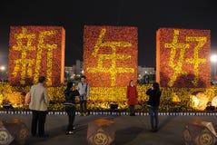 het gelukkige Chinese nieuwe jaar van 2013 bij nacht Stock Fotografie