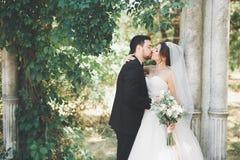 Het gelukkige de bruid en de bruidegom stellen van het huwelijkspaar in een botanisch park stock fotografie