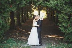 Het gelukkige de bruid en de bruidegom stellen van het huwelijkspaar in een botanisch park stock afbeelding