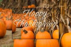 Het gelukkige flard van de dankzeggingspompoen Stock Fotografie