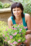 Het gelukkige het glimlachen middenleeftijdsvrouw tuinieren stock foto's