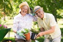 Het gelukkige hogere paar tuinieren Stock Afbeeldingen