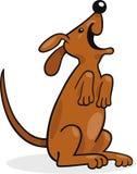 Het gelukkige hond ontschorsen Stock Fotografie