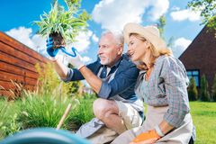 Het gelukkige het houden van paargevoel vocht het bekijken hun nieuwe groene huisinstallatie royalty-vrije stock afbeeldingen