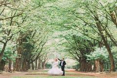 Het gelukkige huwelijkspaar charmeren verzorgen en de blondebruid die in park bij zonnige dag dansen stock foto