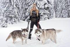 Het gelukkige jonge vrouw spelen met honden Stock Foto's