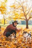 Het gelukkige jonge vrouw spelen met honden in openlucht Stock Fotografie