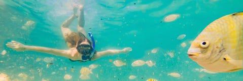 Het gelukkige jonge vrouw zwemmen onderwater in de tropische oceaanbanner, LANG FORMAAT royalty-vrije stock fotografie