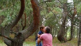 Het gelukkige kind in een pijnboom bossprongen van een boom, papa vangt hem in langzame motie stock videobeelden