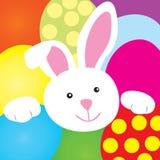 Het gelukkige konijntje van Pasen Stock Foto