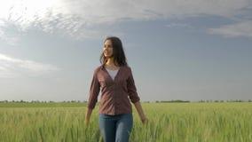 Het gelukkige landbouwersmeisje loopt door gerstgebied en raakt groene installaties op achtergrond van hemel, windruches haar haa stock videobeelden