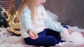 Het gelukkige leuke blondemeisje voedt het witte konijn een wortel stock video