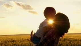 Het gelukkige Mamma houdt het kind in zijn wapens bij zonsondergang tegen de achtergrond van het tarwegebied Gelukkige familie bi stock videobeelden
