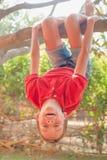 Het gelukkige meisje hangen van een boom in een de zomerpark stock afbeeldingen