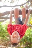 Het gelukkige meisje hangen van een boom in een de zomerpark royalty-vrije stock afbeelding