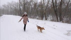 Het gelukkige meisje spelen met hond in de winter in park in blizzard Kerstmisvakantie met een huisdier Langzame Motie stock footage