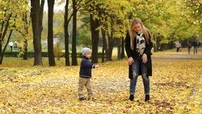 Het gelukkige moeder en zoons spelen in de herfstpark stock video
