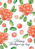 Het gelukkige ontwerp van de dankzeggingskaart met Amerikaanse veenbessen Stock Afbeelding