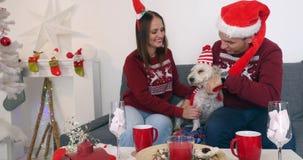 Het gelukkige paar met hond, allen in Kerstmis kleedt het zitten op de bank dichtbij Kerstboom stock footage