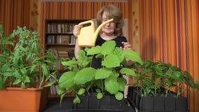 Het gelukkige rijpe vrouwelijke tuinman water geven ontspruit thuis stock videobeelden