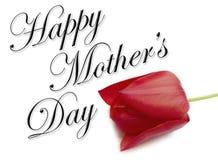 Het gelukkige Type van Dag van Moeders Stock Foto
