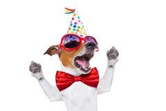 Het gelukkige verjaardagshond zingen Stock Foto's