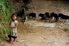 Het gelukkige Vietnamese kinderen spelen Royalty-vrije Stock Afbeelding
