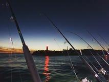 Het genieten van de van zonsopgang royalty-vrije stock fotografie