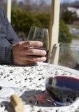 Het genieten van van Wijn Stock Foto's