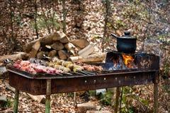 Het geroosterde kebab koken op metaalvleespen met aardappels Geroosterd die vlees bij barbecue wordt gekookt Grill, picknick, str Stock Fotografie