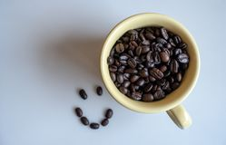 Het geroosterde lachebekje van de koffieboon op witte achtergrond stock foto's