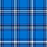 Het geruite Schotse wollen stof van Edinburgh `86 Royalty-vrije Stock Afbeelding