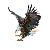 Het geschilderde adelaar aanvallen geïsoleerd op witte achtergrond Stock Foto's