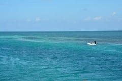Het Gespleten Strand op Caye-Breeuwijzereiland Belize stock foto's