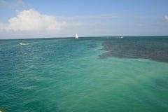 Het Gespleten Strand op Caye-Breeuwijzereiland Belize stock afbeeldingen