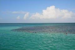 Het Gespleten Strand op Caye-Breeuwijzereiland Belize stock foto