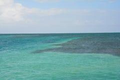 Het Gespleten Strand op Caye-Breeuwijzereiland Belize stock afbeelding